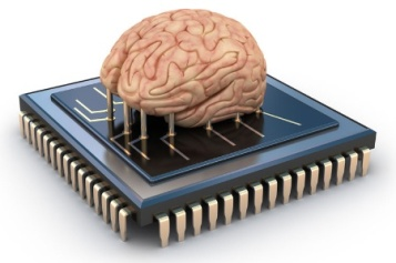 brain-attached-to-computer-processo_450